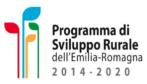 Programma Sviluppo Emilia Romagna
